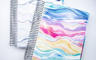 2020 Erin Condren Daily LifePlanner Review