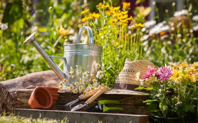 15 Budget Friendly Spring Activities